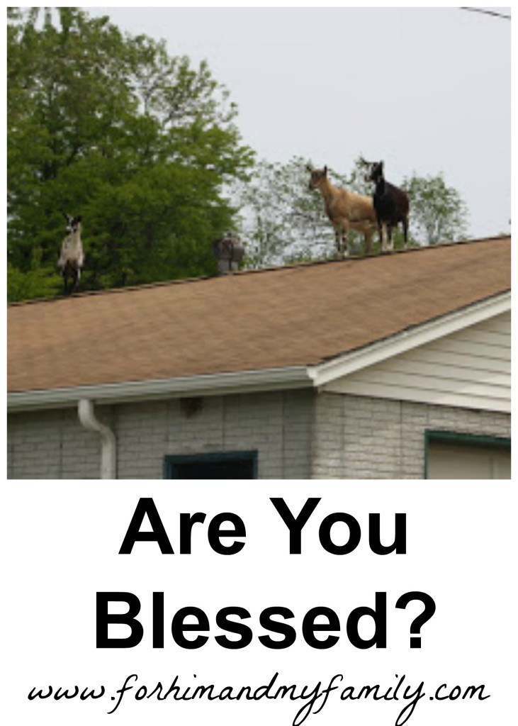 Are you blessed?
