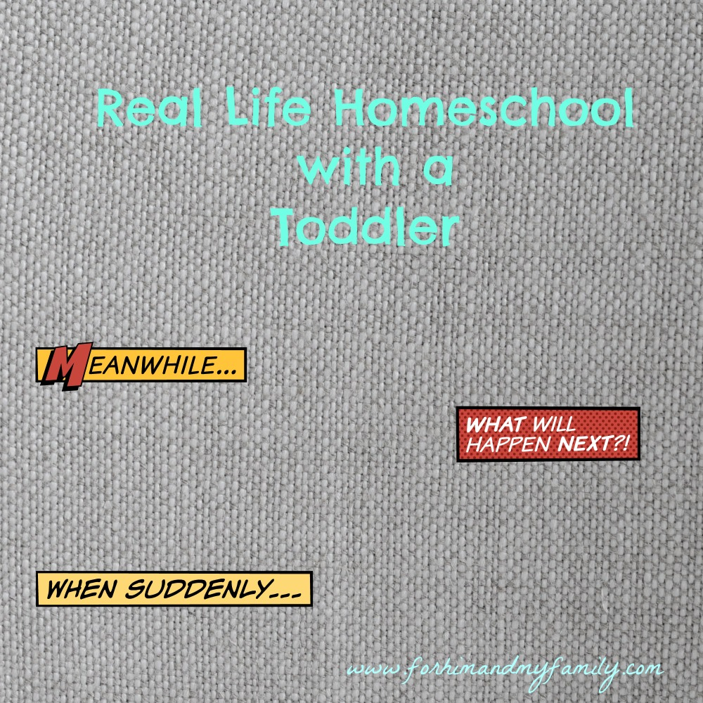 Real Life Homeschool with a Toddler