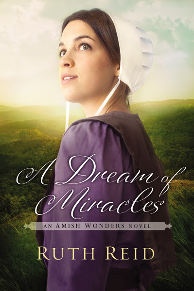 A Dream of Miracles {Litfuse Review}