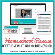 Help for the Harried Homeschool Mom